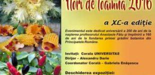 """""""Flori de toamna 2016"""" – expozitie de flori"""