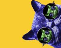"""Spectacolul """"Pisica verde"""" la Teatrul Luceafărul"""