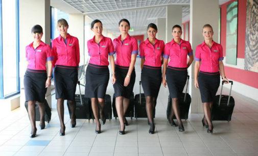 Ryanair si Wizz Air cauta insotitori de bord la Iasi